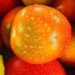 Jak myc warzywa i owoece